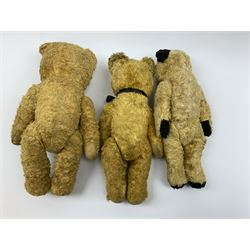 Two continental graduated teddy bears,1950s, each with wood wool filled cotton plush type bodies, glass eyes, vertically stitched nose and mouth and jointed limbs with fabric paw pads largest H14.5