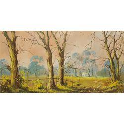 Don Micklethwaite (British 1936-): Rural Landscape, oil on canvas signed 39cm x 74cm
