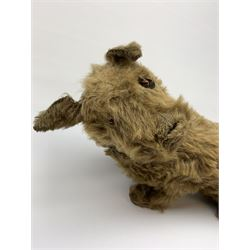 English caramel fudge coloured seated Cairn style terrier dog c1930s-50s with wood wool filling, swivel jointed head with original glass eyes, wire supported front legs and leather collar L25.5