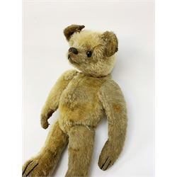 Early 20th century American mohair teddy bear c1920 with wood wool filled body humped back body with jointed limbs, black boot button eyes and horizontal stitched nose and mouth H12