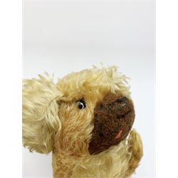 Farnell curly plush spaniel dog in a crouching position with glass eyes, dark brown snout, long tail and ears and jointed swivel head L25.5