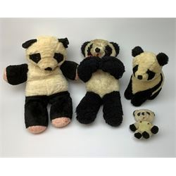 Seven English panda bears 1950s-60s including Farnell with fixed head and limbs, glass type eyes and vertically stitched nose and mouth H18